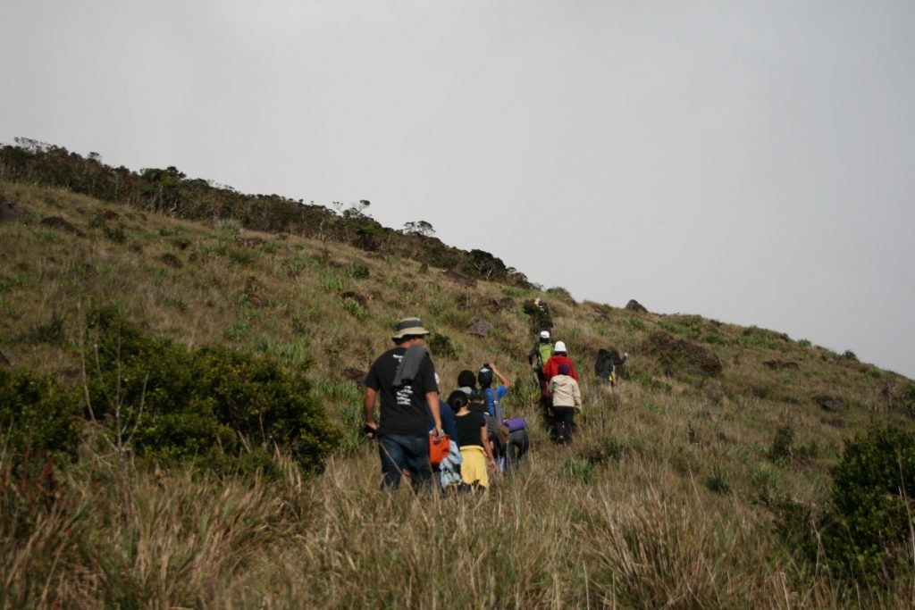 hiking towards junior grassland